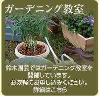 ガーデニング教室 鈴木園芸ではガーデニング教室を開催しています。お気軽にお申込ください。詳細はこちら